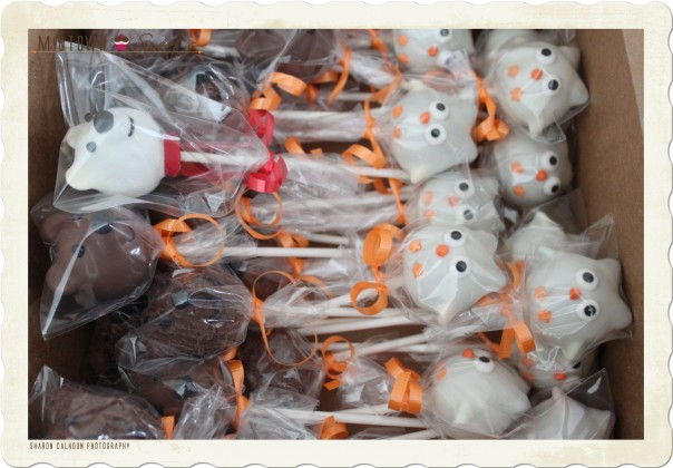 Owl Bear Cake Pops